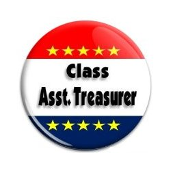 Button Pin: Class Asst Treasurer (GT5055)